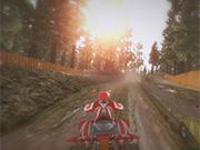 Quadbike: Trail King